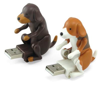 USB de perritos haciendo... el perrito
